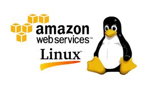 Amazon Linux 2